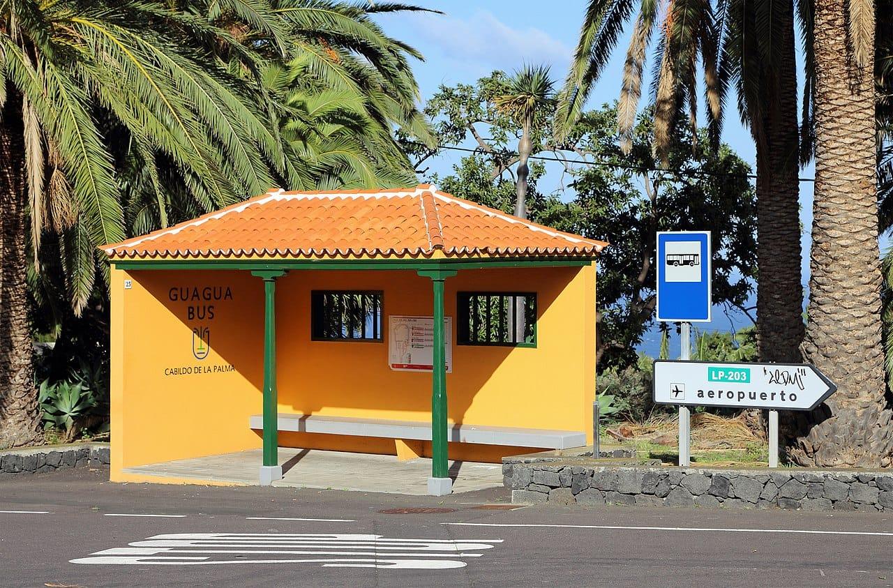 Visitare La Palma in autobus