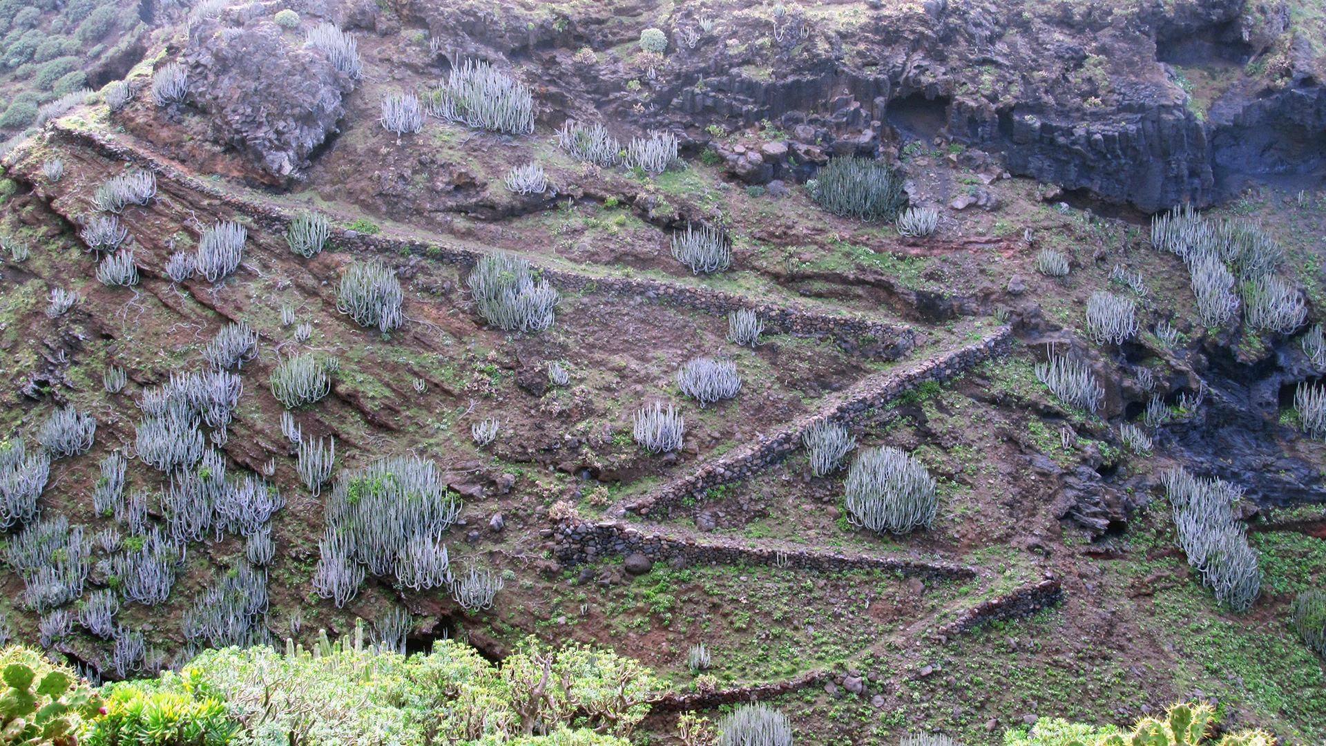 turismo rurale La Palma Canarie sentieri camino real