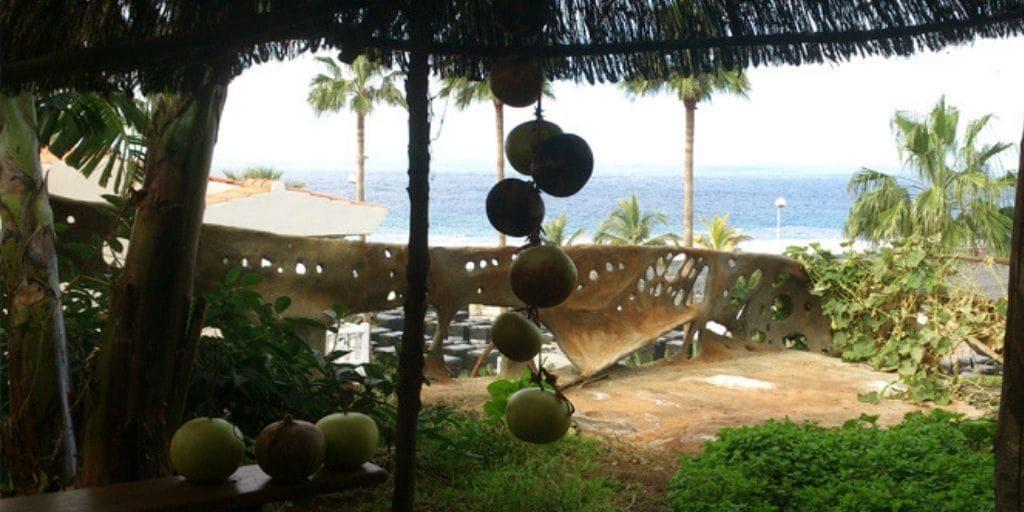 El Platanologico- ecological bananas plantation in La Palma 8