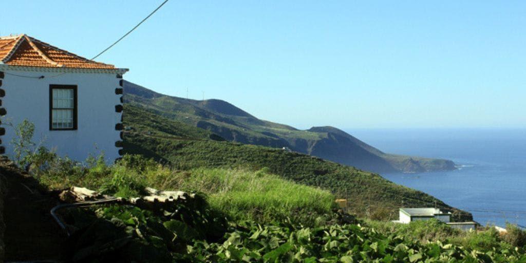 Gallegos La Palma 3