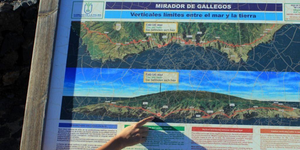 Gallegos La Palma 9