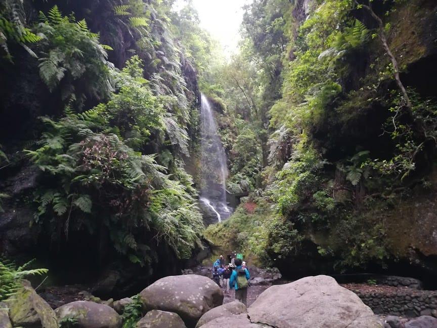 La Palma Trekking Los Tilos Waterfall