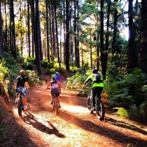 Escursione bicicletta elettrica e-bike Garafia la palma isole canarie