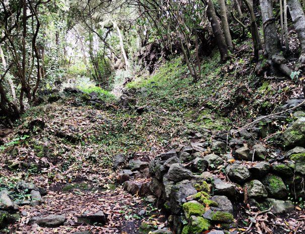 lqa-galga-fayal-brezal